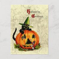 Vintage Halloween Black Cat Postcard