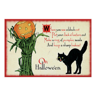 Vintage Halloween Black Cat Pumpkin Phrase Poster
