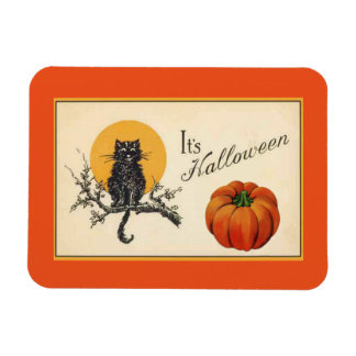 Vintage Halloween Cat Magnet