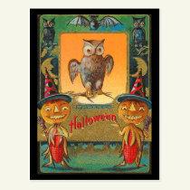 Vintage Halloween Owl Postcard