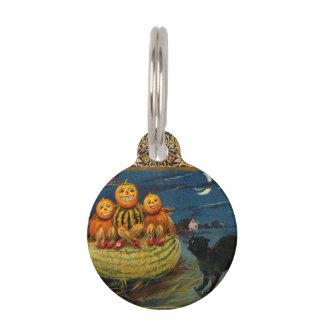 Vintage Halloween Party Black Cat Scary Pumpkins Pet Name Tag