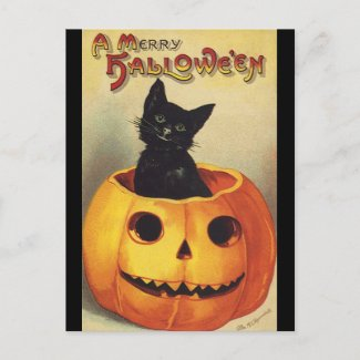Vintage Halloween Smiling Cute Black Cat Pumpkin Postcard
