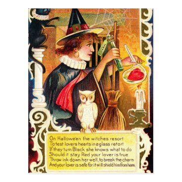 Halloween Themed Vintage Halloween witch owl Holiday postcard
