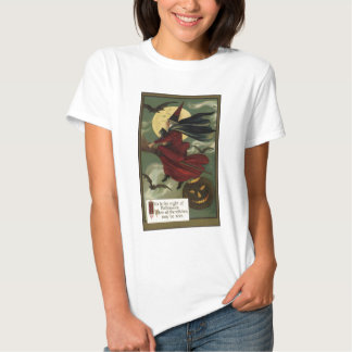 Vintage Halloween Witch Riding a Broom with Cat Shirt