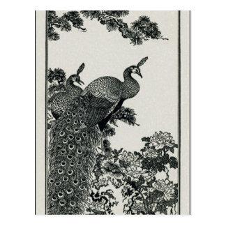 Vintage Hapiness Couple Peacocks and Peonies Postcard