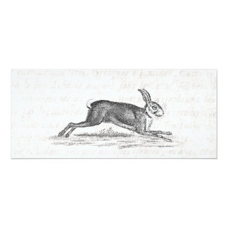 Vintage Hare Bunny Rabbit 1800s Illustration 4x9.25 Paper Invitation Card