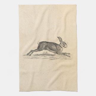Vintage Hare Bunny Rabbit 1800s Illustration Kitchen Towel