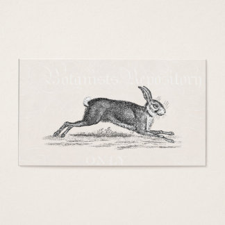 Vintage Hare Bunny Rabbit Illustration - Rabbits Business Card