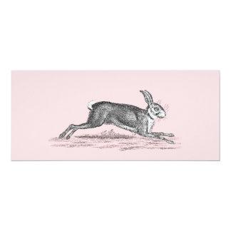 Vintage Hare Bunny Rabbit Illustration -Rabbits Card