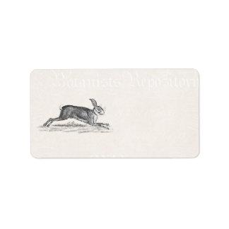 Vintage Hare Bunny Rabbit Illustration -Rabbits Address Label
