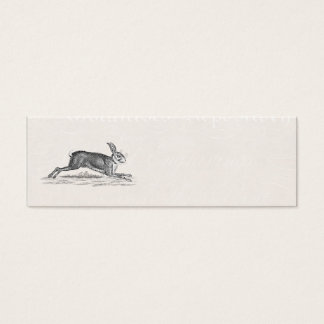 Vintage Hare Bunny Rabbit Illustration - Rabbits Mini Business Card
