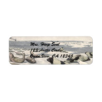 Vintage Harp Seals in Arctic Snow, Marine Animals