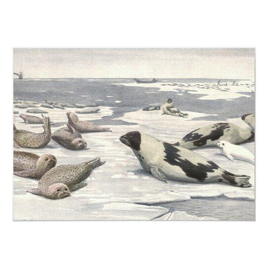 Vintage Harp Seals in Arctic Snow, Marine Animals Card