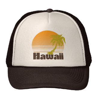 Vintage Hawaii Gorros