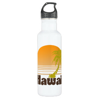 Vintage Hawaii Stainless Steel Water Bottle