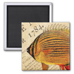 Vintage Hawaiian Butterfly Fish Customized Fishes Refrigerator Magnet