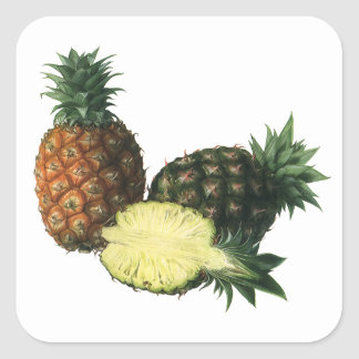 Vintage Hawaiian Pineapples, Organic Food Fruit Square Sticker