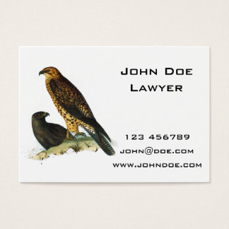 Vintage Hawks Illustration Business Card