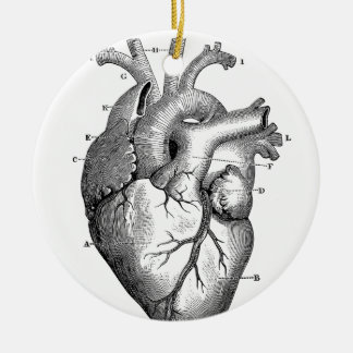 Vintage Heart Anatomy | Customizable Ceramic Ornament