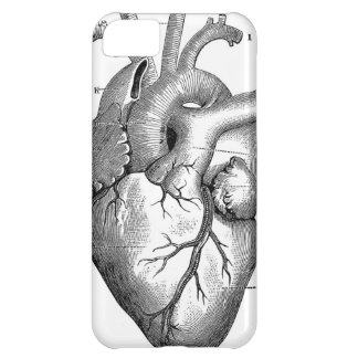 Vintage Heart Anatomy | Customizable iPhone 5C Case