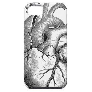 Vintage Heart Anatomy | Customizable iPhone SE/5/5s Case