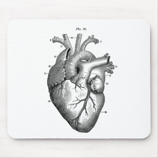 Vintage Heart Anatomy | Customizable Mouse Pad
