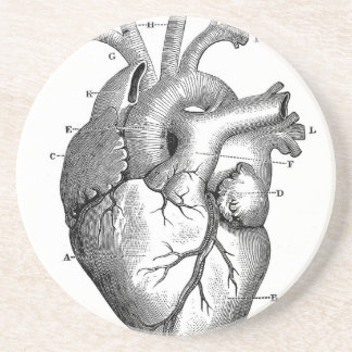 Vintage Heart Anatomy | Customizable Sandstone Coaster