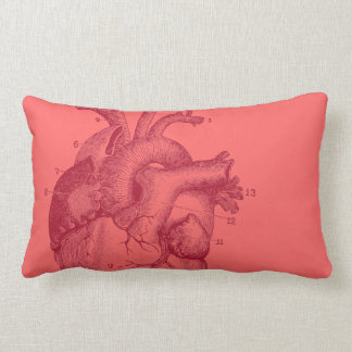 Vintage Heart - anatomy Lumbar Pillow