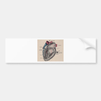 Vintage Heart Card Bumper Stickers