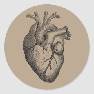 Vintage Heart Illustration Classic Round Sticker