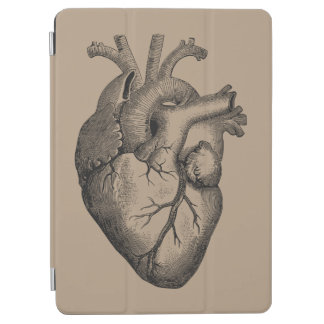 Vintage Heart Illustration iPad Air Cover