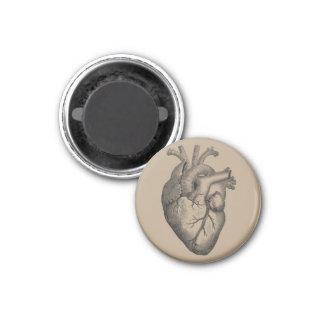 Vintage Heart Illustration Magnet