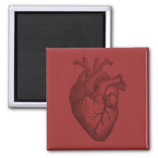 Vintage Heart Illustration Fridge Magnets