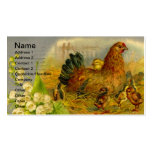 Vintage Hen and Chicks Double-Sided Standard Business Cards (Pack Of 100)