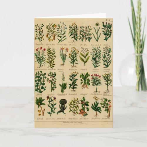 Vintage Herbal Greeting Card Series - 3