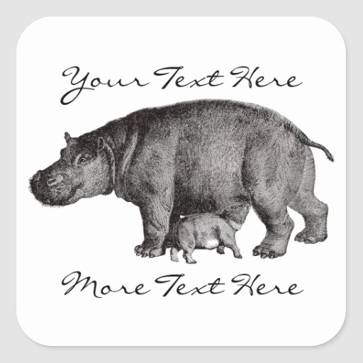 Vintage Hippo Stickers