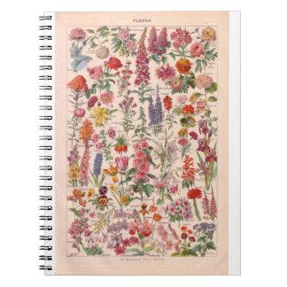 Vintage histórico, flores libros de apuntes