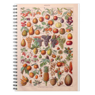 Vintage histórico, fruta libreta espiral