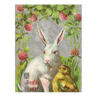 Vintage Holiday Bunny Easter Postcard