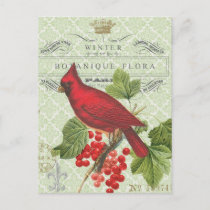 Vintage Holiday-Winter red cardinal-postcard Holiday Postcard