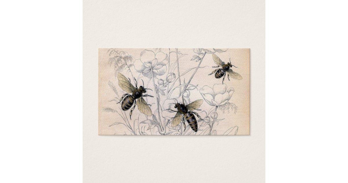 Vintage Honey Bee Art Print Zazzlecom