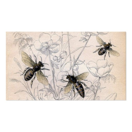 Vintage Honey Bee Art Print Business Card Templates