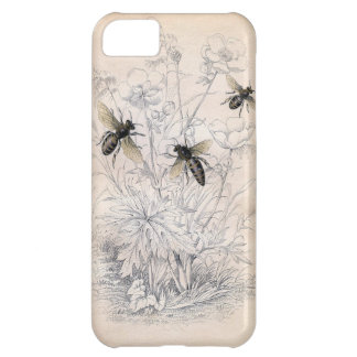 Vintage Honey Bee Art Print Case For iPhone 5C