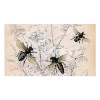 Vintage Honey Bee Art Print Double-Sided Standard Business Cards (Pack Of 100)