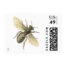 Vintage Honey Bee Illustration US Postage Stamps