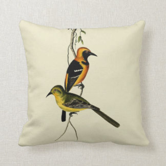 Vintage Hooded Oriole Bird Throw Pillow