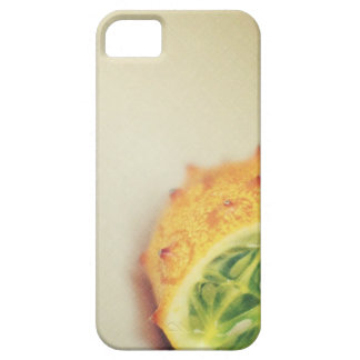Vintage Horned Melon iPhone 5 Cases