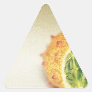Vintage Horned Melon Triangle Sticker