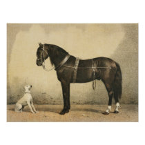 Vintage Horse and Dog Poster or Decoupage Paper
