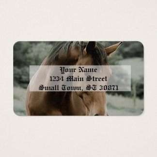 vintage horse animal painting art business card